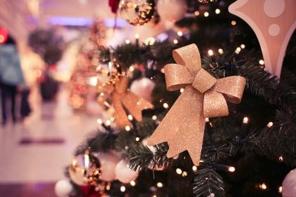picjumbo.com_IMG_4336